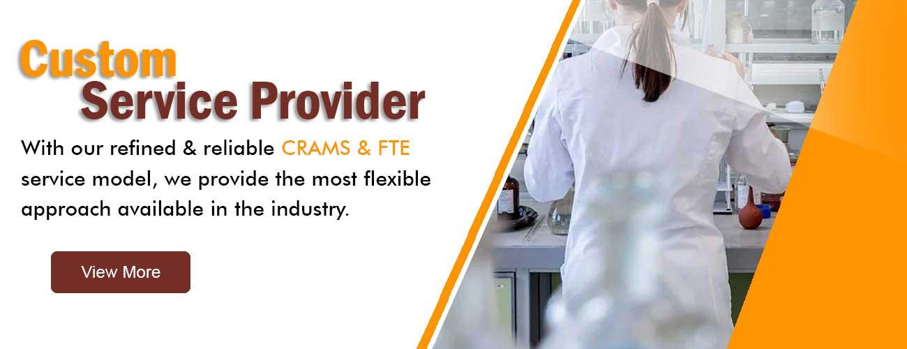 Coustom Service Provider